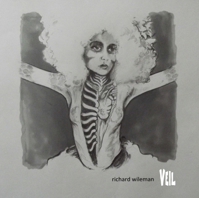 veil-cover